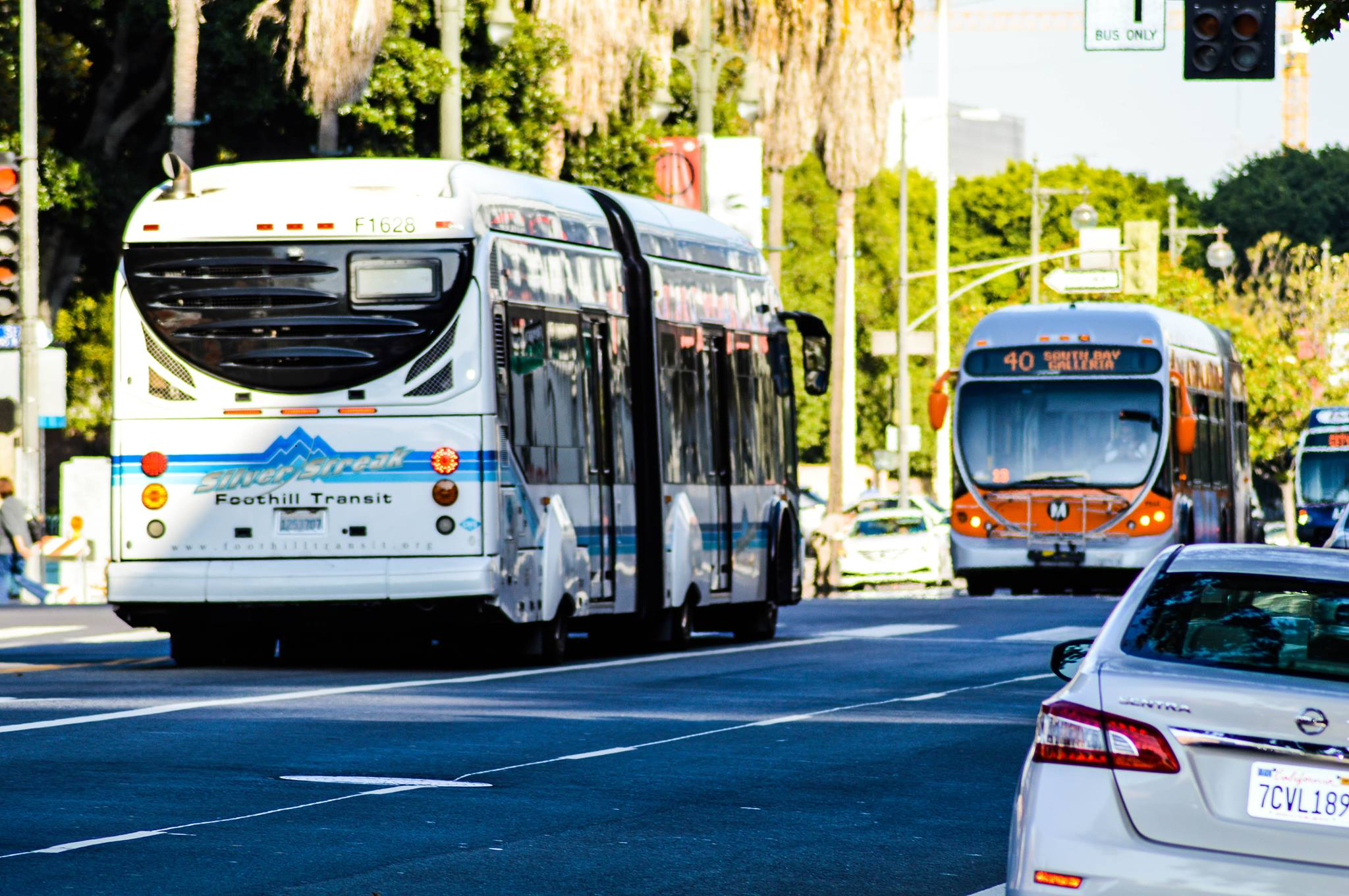 #TransitBros having a stare down! Credit: Jon Ross Alexander/Metro
