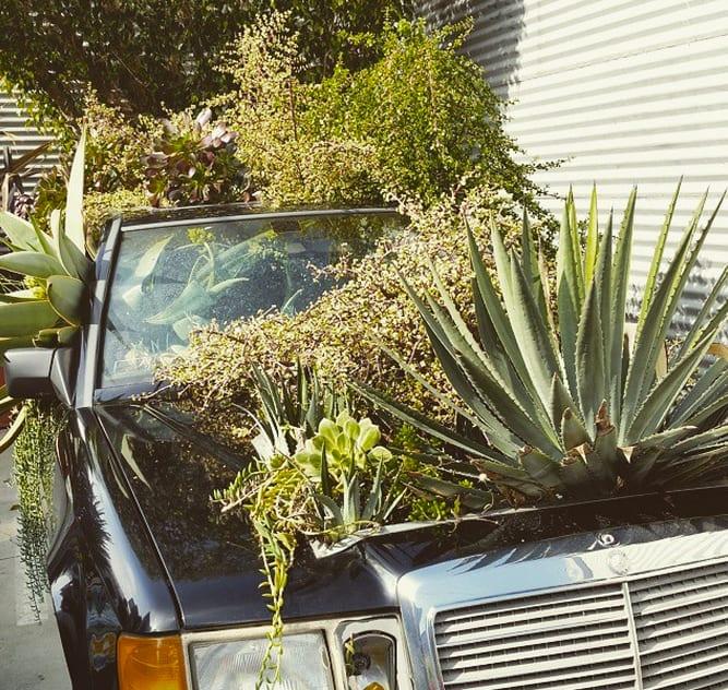 A garden variety automobile at the Santa Monica Museum of Art. (via @metrolosangeles Instagram)