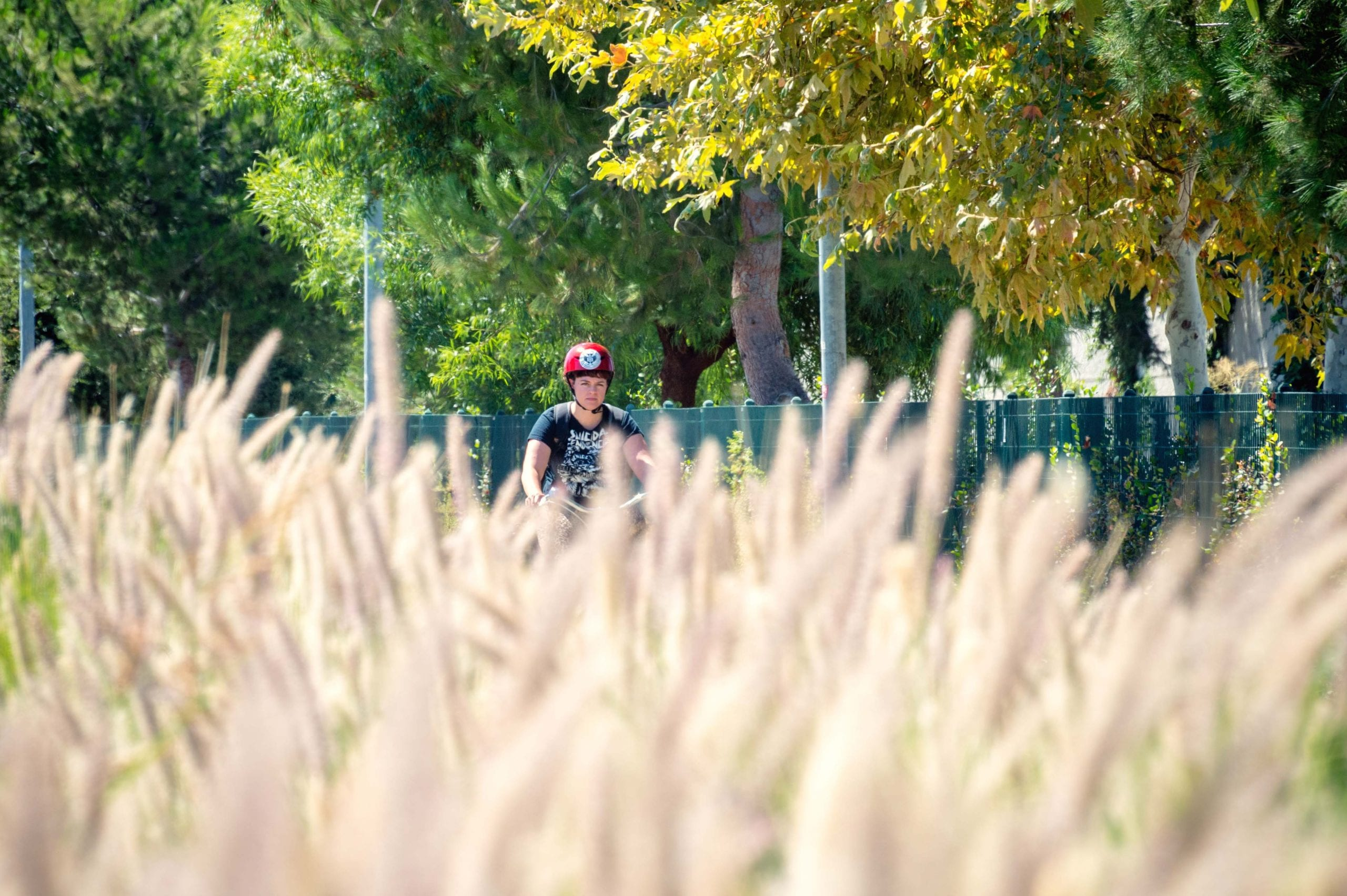 A cyclist on the Orange Line bike path last summer. Photo by Steve Hymon/Metro.