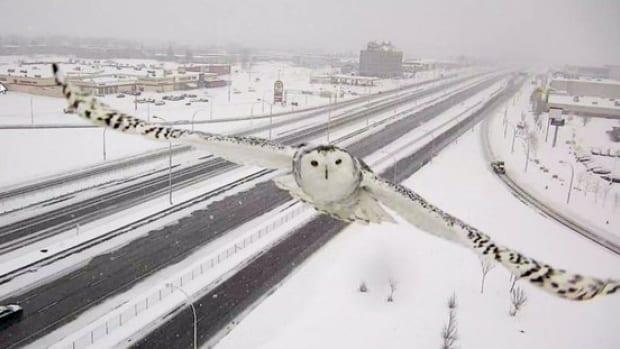 Photo: Transport Quebec.