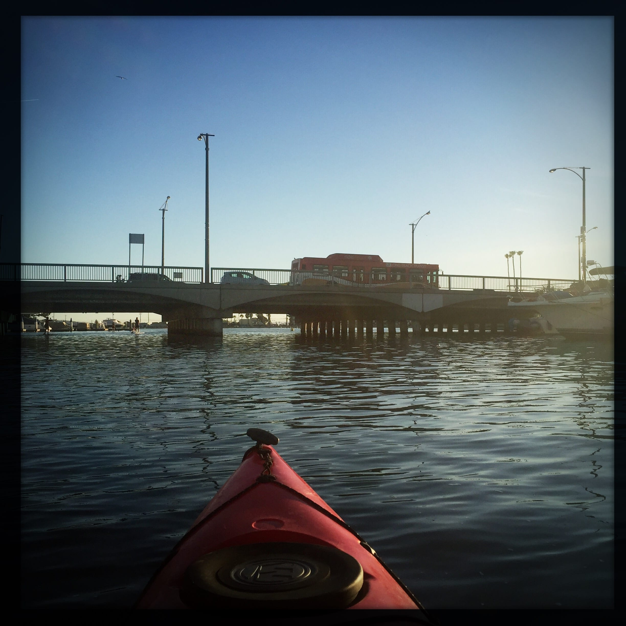 The scene from a kayak yesterday in Alamitos Bay in Long Beach. Photo by Steve Hymon.